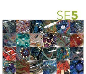 se5 fifth silver color how to ebook